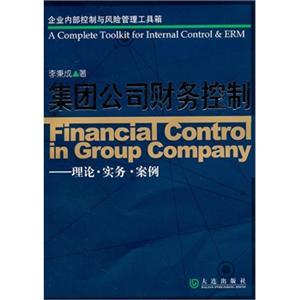 集团公司财务控制(理论实务案例)